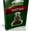 Effortless Abundance Book picture